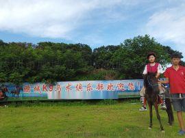 深圳周边骑马最便宜的地方