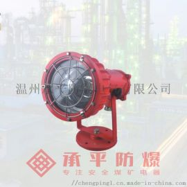 DGS50/127L矿用隔爆型LED投光灯