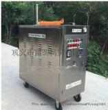 蒸汽內置燃氣罐移動蒸汽洗車機 蒸汽洗車機多少錢