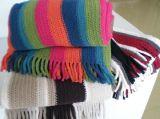 双面绒彩条经编毯 (BY-WK001)
