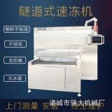 全自动鸡肉丸子速冻机 肉制品组装式速冻机