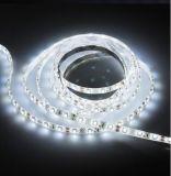 LED软灯条, 60灯/M, 3528灯带, 酒店装饰灯带, 12VLED汽车灯