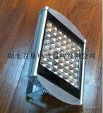 NFC9170-56W-LED隧道燈