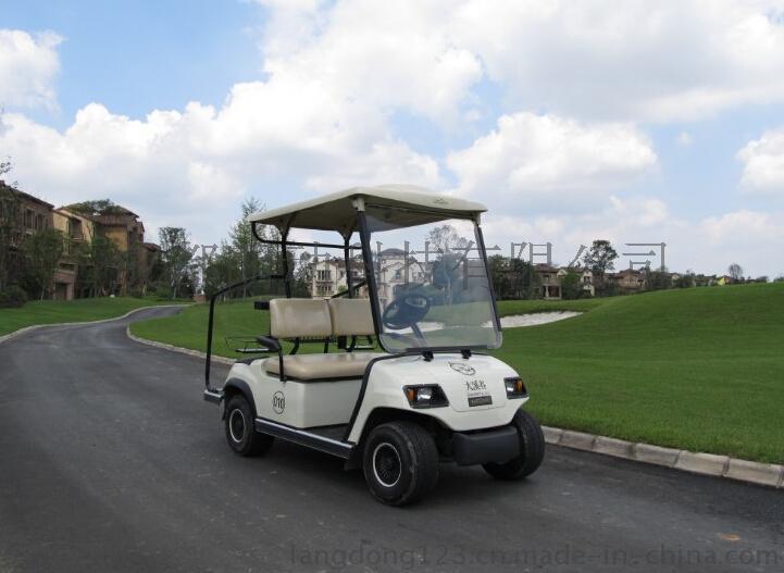 成都朗動LD-A2兩人座高爾夫電動觀光車