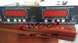 昶艾P860-3N氮气分析仪