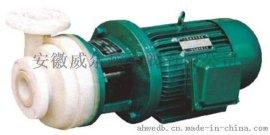 威尔顿PF型强耐腐蚀化工泵