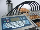 黑龍江日期噴碼機|雞蛋多頭噴碼機