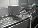 紅棗清洗流水線