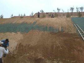 广西三维植被网,公路边坡绿化