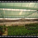 安平唯中 蔬菜防蟲網