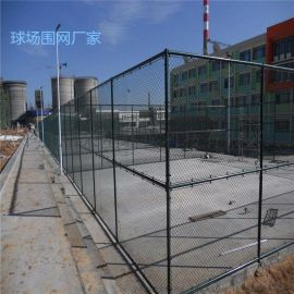 球場護欄廠家、運動場地圍網、防撞網
