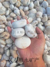 河南白色鹅卵石的供应规格,顺永天然白色鹅卵石