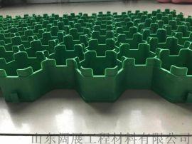 植草格绿化