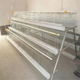 金兴鸡笼厂家阶梯式鸡笼A型蛋鸡笼三层鸡笼五门鸡笼全自动鸡笼全自动养鸡设备