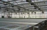 供應PC陽光板連棟溫室大棚