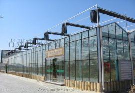 青州泉瑞生产供应智能玻璃温室大棚