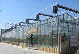 青州泉瑞生産供應智能玻璃溫室大棚