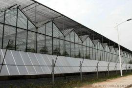 玻璃温室 智能玻璃温室 智能温室建造