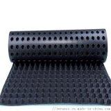 廠家直供屋頂綠化排水板 2cm塑料蓄排水板 疏水板