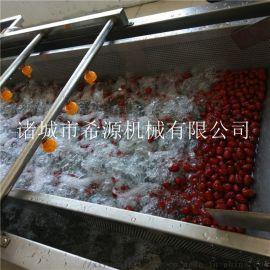 春季源头厂货 水果蔬菜去农药残留清洗机