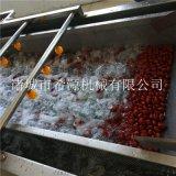 春季源頭廠貨 水果蔬菜去農藥殘留清洗機