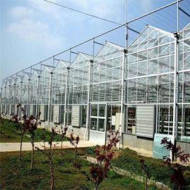 节能智能温室大棚  全玻璃智能温室 智能温室