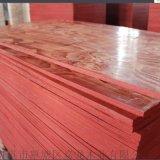 胶合板  建筑模板  建筑胶合板