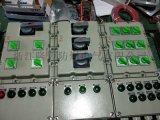 BXD51-10/KXX 防爆配电箱