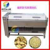 工厂自产生姜大姜清洗机 毛辊毛刷红薯清洗机