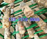 食用菌网格网架包塑管香菇架养殖蘑菇网片蘑菇架