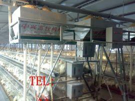 鸡笼子厂家 三层阶梯式蛋鸡笼 热镀锌蛋鸡笼