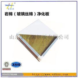山东宏鑫源|彩钢净化板价格   彩钢阻燃净化板厂家价格 手工彩钢净化板芯材价格