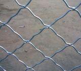 生产供应镀锌美格网防盗窗,涂塑美格网护栏网,