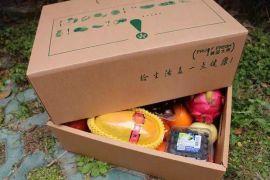南沙特色水果纸盒:包装盒设计方案:案例展示: