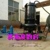 高耐磨尾矿砂泵