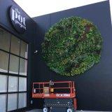 供應天花牆面裝飾模擬植物牆假植物