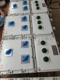 BXD-53防爆动力配电箱BXD-53