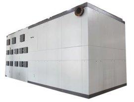 10吨生物质导热油炉