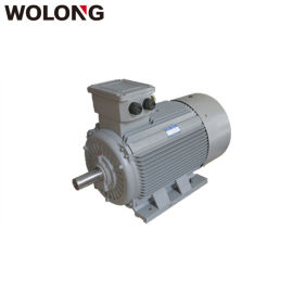 WOLONG/卧龙 IE2标准4极高效三相异步电动机 卧龙马达 卧龙电机