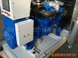 供应发电机   20kw雷沃小型柴油发电机组