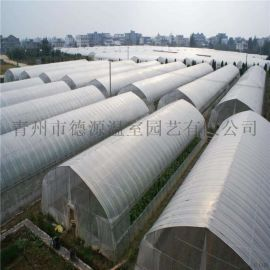 日光温室大棚 蔬菜花卉大棚 温室大棚造价