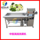 中型涡流臭氧清洗机 气泡果蔬洗菜机