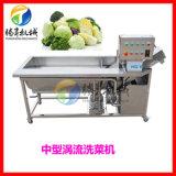中型渦流臭氧清洗機 氣泡果蔬洗菜機