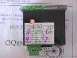 数显功率表 CD194-204