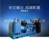 濰坊廠家濰柴900KW千瓦常用柴油發電機組純銅無刷免維護全國聯保