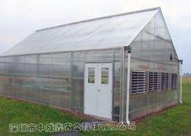 单体PC板温室