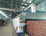 陝西哪余有便宜的燒結磚陶土磚真空磚古青磚