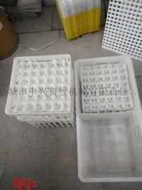 30枚鸡蛋托 塑料蛋托 鸡蛋孵化托盘