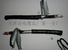 耐高温同轴电缆-SFF
