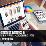 企业营销型网站建设 企业手机网站建设 企业微信官网建设